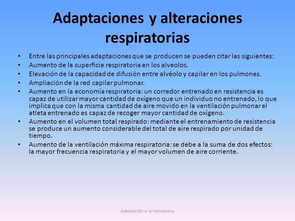 Adaptaciones y alteraciones respiratorias Entre las principales adaptaciones que se producen se pueden citar las siguientes: Aumento de la superficie