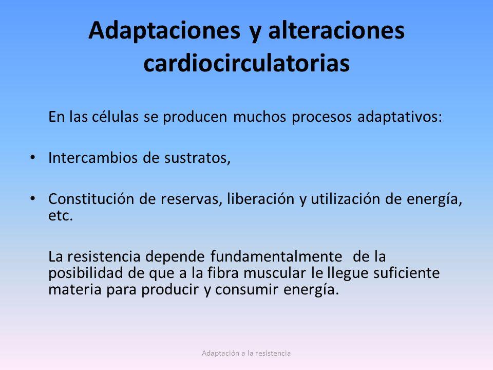 Adaptaciones y alteraciones cardiocirculatorias En las células se producen muchos procesos adaptativos: Intercambios de sustratos, Constitución de res