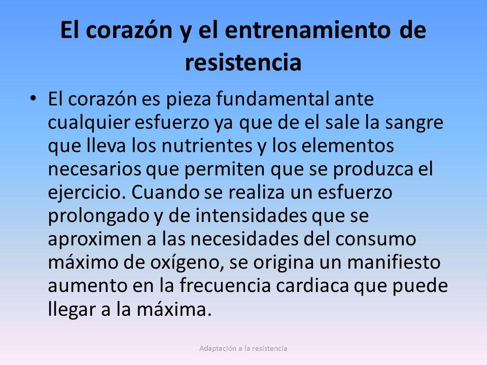 El corazón y el entrenamiento de resistencia El corazón es pieza fundamental ante cualquier esfuerzo ya que de el sale la sangre que lleva los nutrien