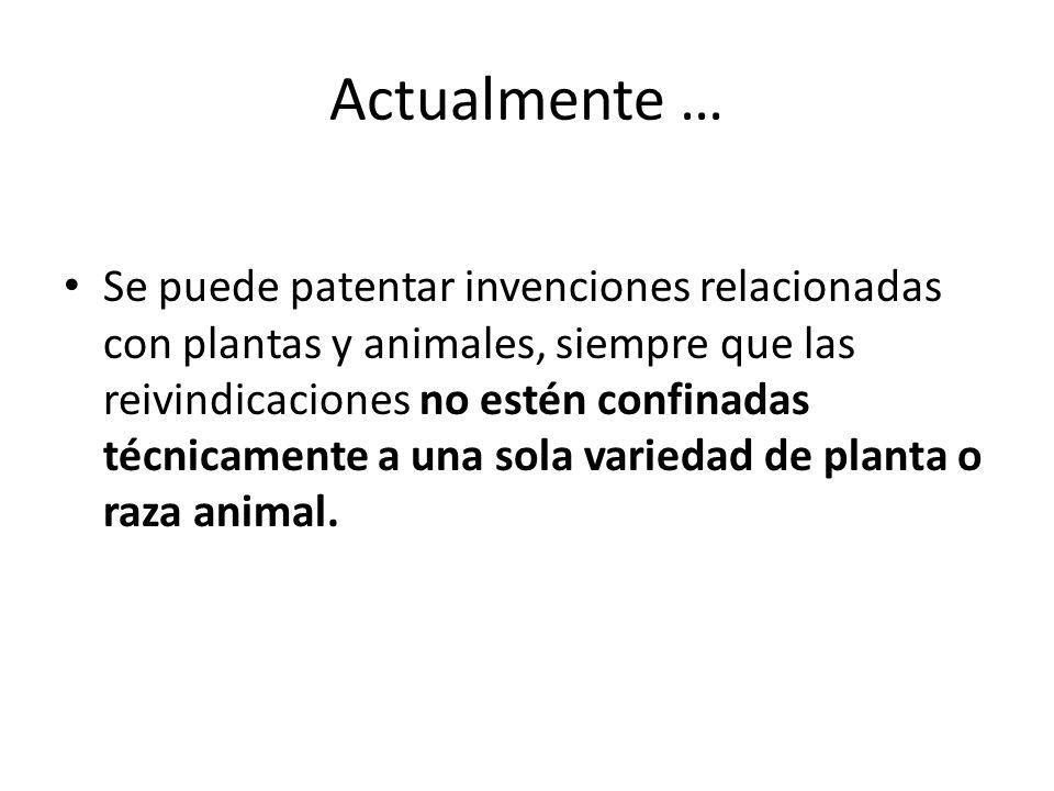 Actualmente … Se puede patentar invenciones relacionadas con plantas y animales, siempre que las reivindicaciones no estén confinadas técnicamente a u
