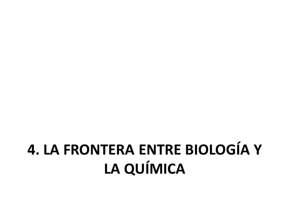 4. LA FRONTERA ENTRE BIOLOGÍA Y LA QUÍMICA