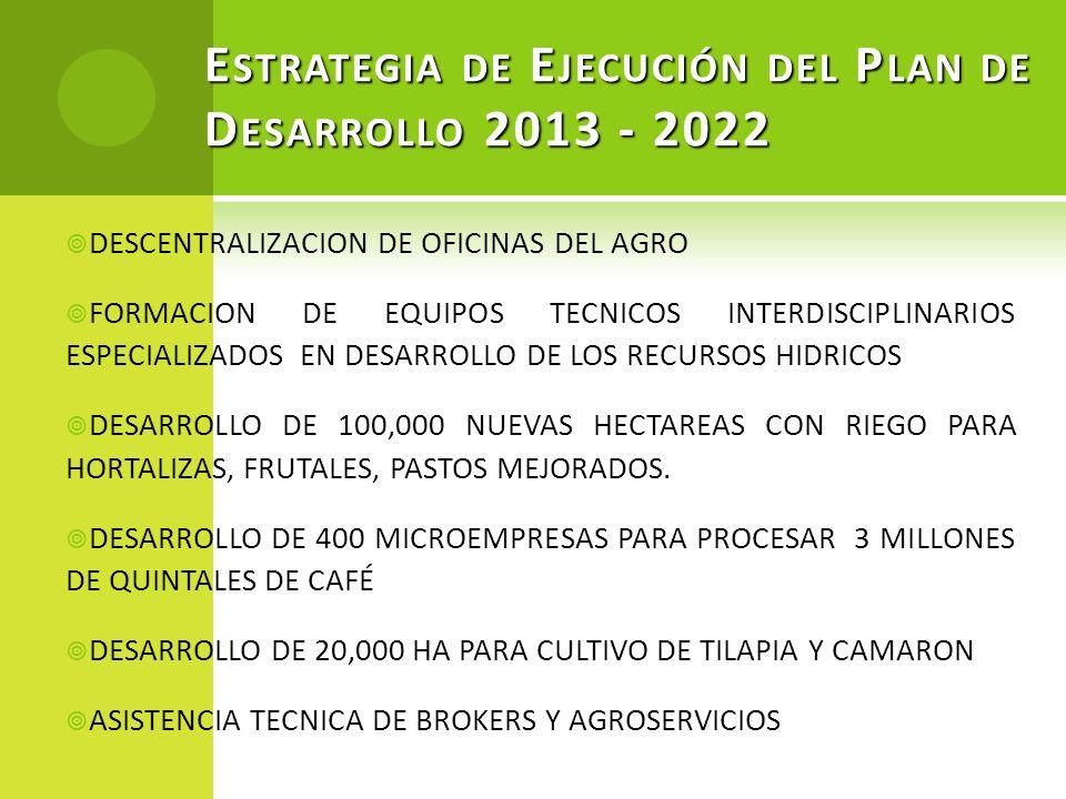 E STRATEGIA DE E JECUCIÓN DEL P LAN DE D ESARROLLO 2013 - 2022 DESCENTRALIZACION DE OFICINAS DEL AGRO FORMACION DE EQUIPOS TECNICOS INTERDISCIPLINARIO