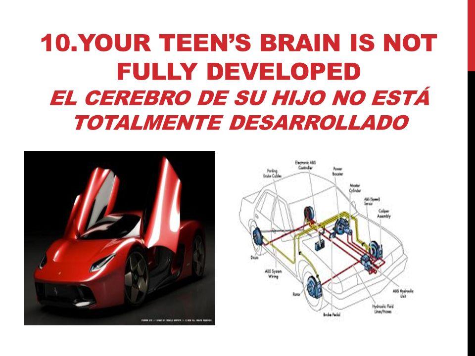 10.YOUR TEENS BRAIN IS NOT FULLY DEVELOPED EL CEREBRO DE SU HIJO NO ESTÁ TOTALMENTE DESARROLLADO