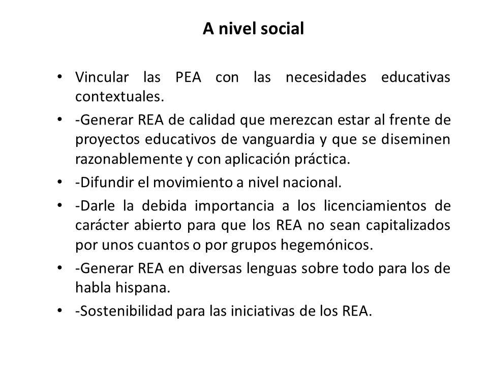 A nivel social Vincular las PEA con las necesidades educativas contextuales.