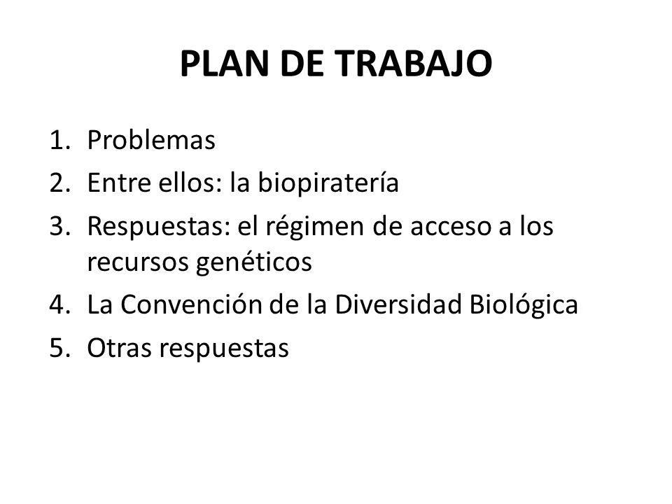 PLAN DE TRABAJO 1.Problemas 2.Entre ellos: la biopiratería 3.Respuestas: el régimen de acceso a los recursos genéticos 4.La Convención de la Diversida