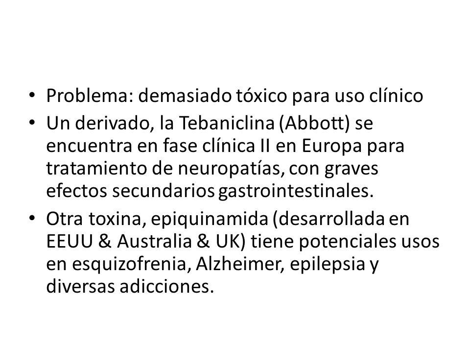 Problema: demasiado tóxico para uso clínico Un derivado, la Tebaniclina (Abbott) se encuentra en fase clínica II en Europa para tratamiento de neuropa