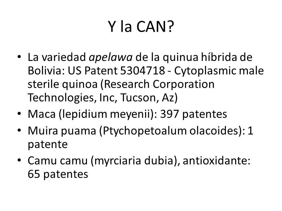 Y la CAN? La variedad apelawa de la quinua híbrida de Bolivia: US Patent 5304718 - Cytoplasmic male sterile quinoa (Research Corporation Technologies,