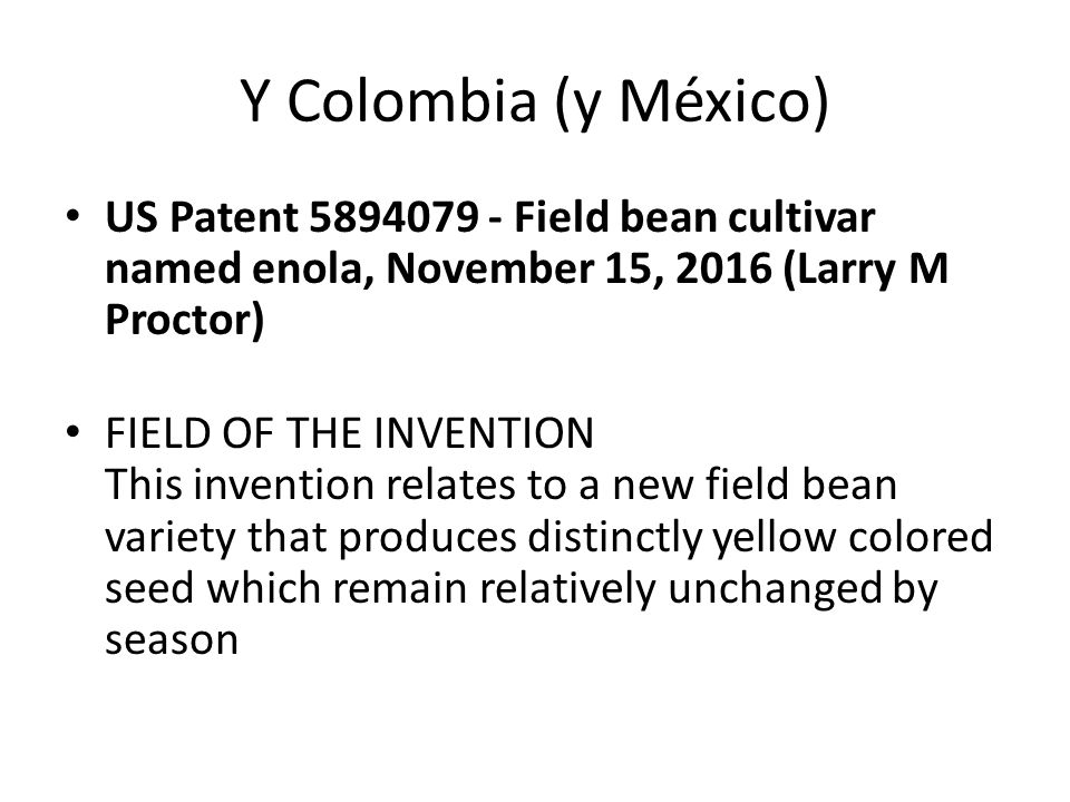Y Colombia (y México) US Patent 5894079 - Field bean cultivar named enola, November 15, 2016 (Larry M Proctor) FIELD OF THE INVENTION This invention relates to a new field bean variety that produces distinctly yellow colored seed which remain relatively unchanged by season