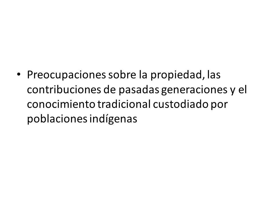 Preocupaciones sobre la propiedad, las contribuciones de pasadas generaciones y el conocimiento tradicional custodiado por poblaciones indígenas