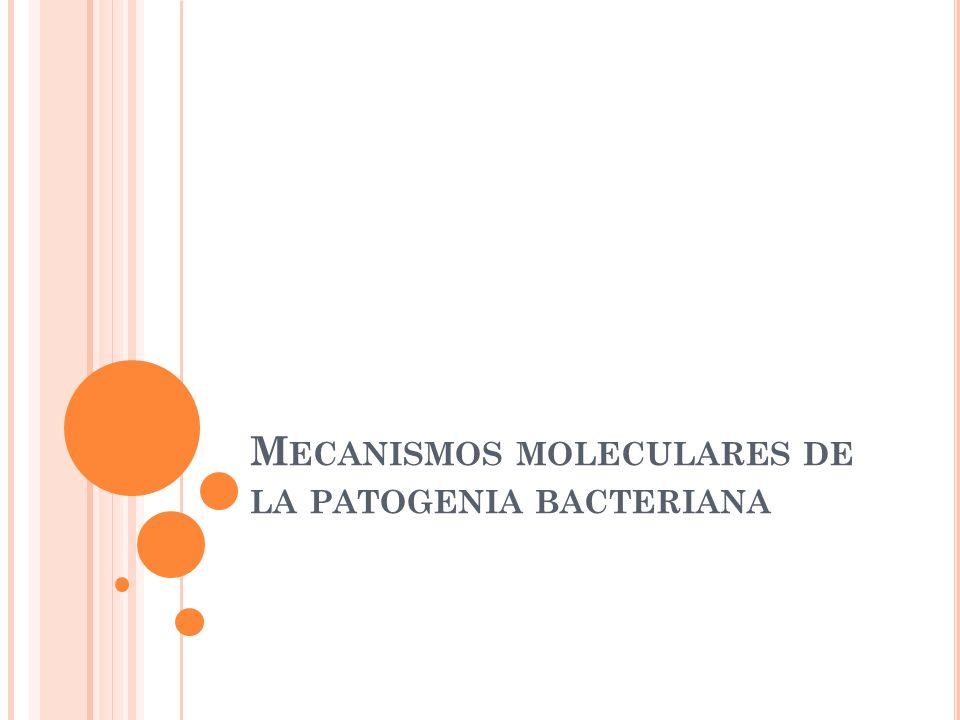 M ECANISMOS MOLECULARES DE LA PATOGENIA BACTERIANA