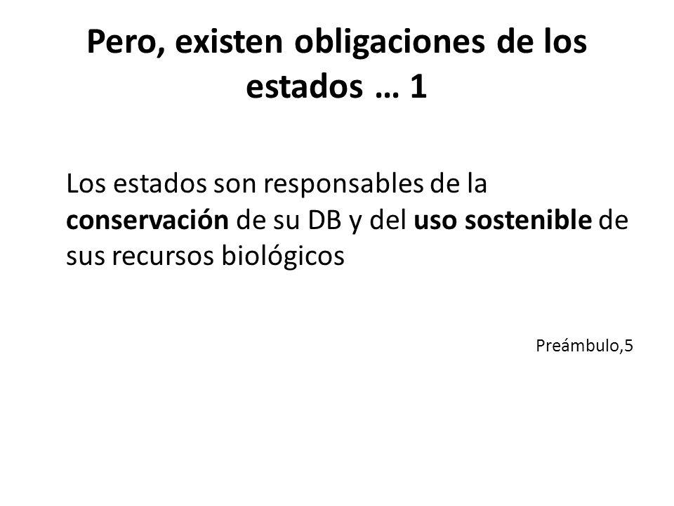 Pero, existen obligaciones de los estados … 1 Los estados son responsables de la conservación de su DB y del uso sostenible de sus recursos biológicos Preámbulo,5