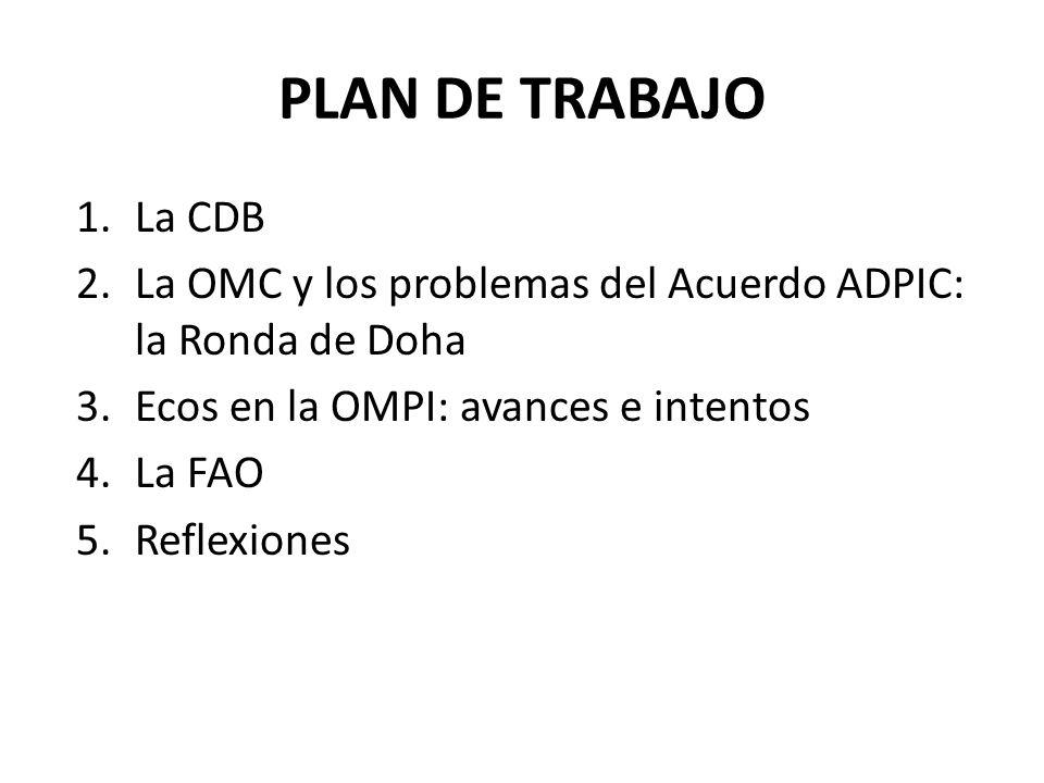 PLAN DE TRABAJO 1.La CDB 2.La OMC y los problemas del Acuerdo ADPIC: la Ronda de Doha 3.Ecos en la OMPI: avances e intentos 4.La FAO 5.Reflexiones