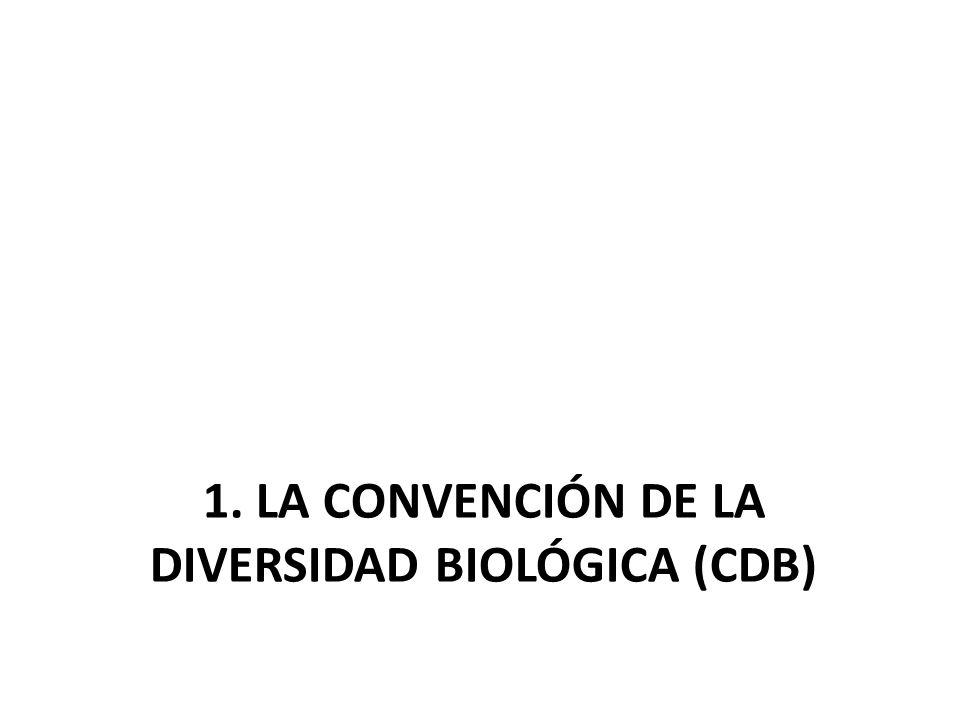 1. LA CONVENCIÓN DE LA DIVERSIDAD BIOLÓGICA (CDB)