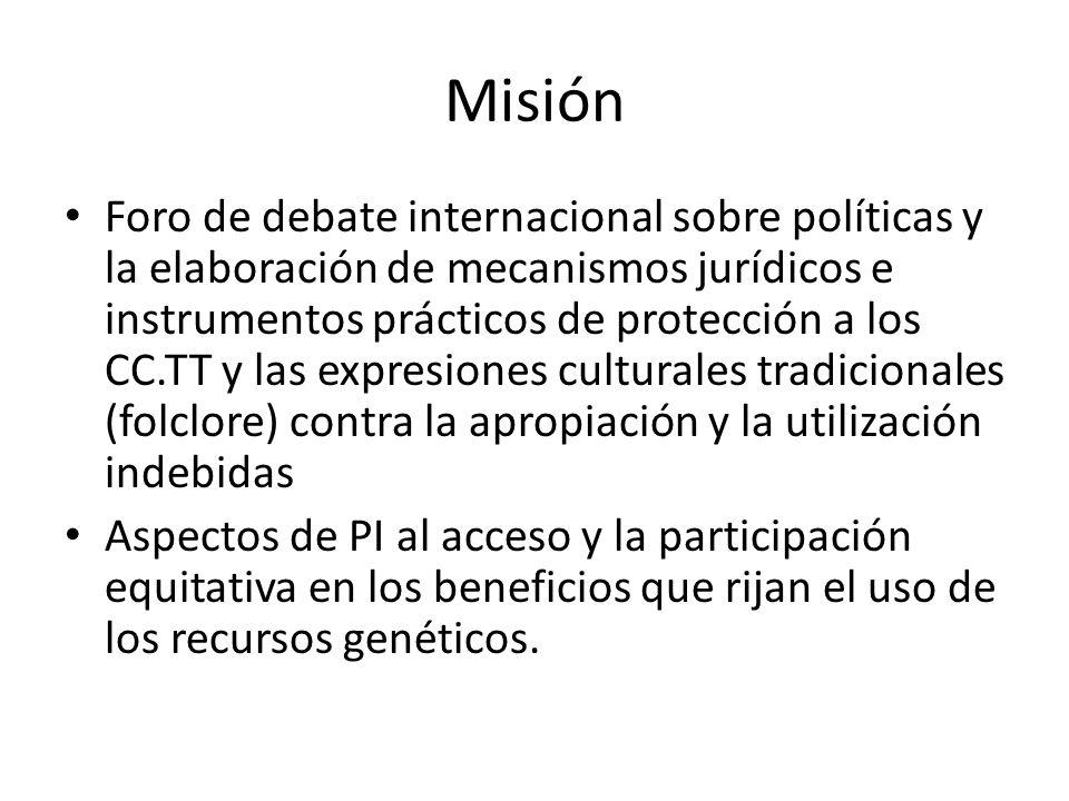 Misión Foro de debate internacional sobre políticas y la elaboración de mecanismos jurídicos e instrumentos prácticos de protección a los CC.TT y las