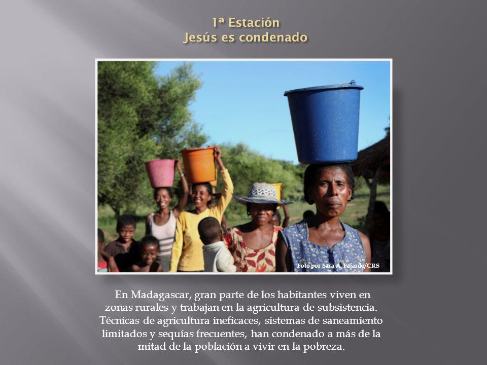 En Madagascar, gran parte de los habitantes viven en zonas rurales y trabajan en la agricultura de subsistencia. Técnicas de agricultura ineficaces, s