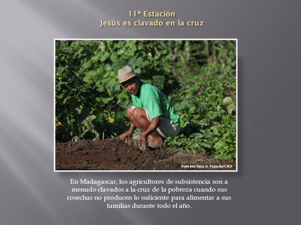 En Madagascar, los agricultores de subsistencia son a menudo clavados a la cruz de la pobreza cuando sus cosechas no producen lo suficiente para alime