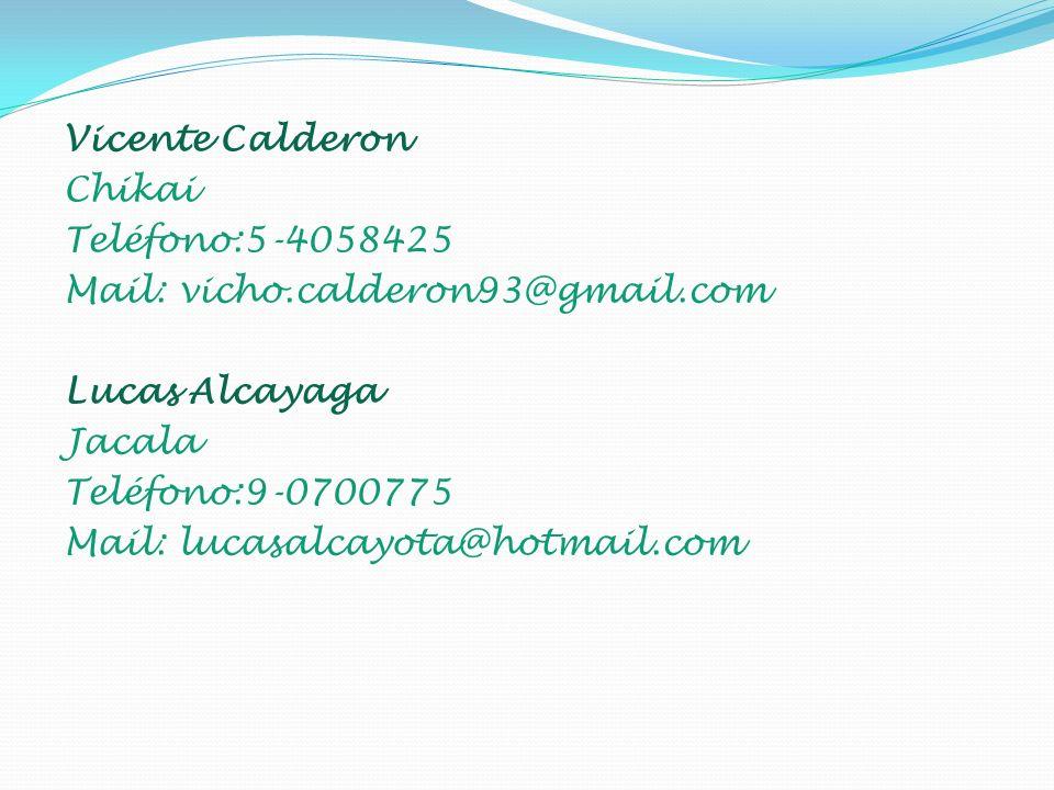Vicente Calderon Chikai Teléfono:5-4058425 Mail: vicho.calderon93@gmail.com Lucas Alcayaga Jacala Teléfono:9-0700775 Mail: lucasalcayota@hotmail.com