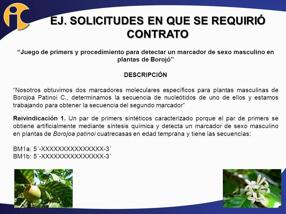 EJ. SOLICITUDES EN QUE SE REQUIRIÓ CONTRATO Juego de primers y procedimiento para detectar un marcador de sexo masculino en plantas de Borojó DESCRIPC