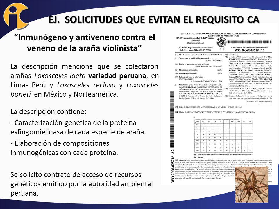 Inmunógeno y antiveneno contra el veneno de la araña violinista La descripción menciona que se colectaron arañas Loxosceles laeta variedad peruana, en