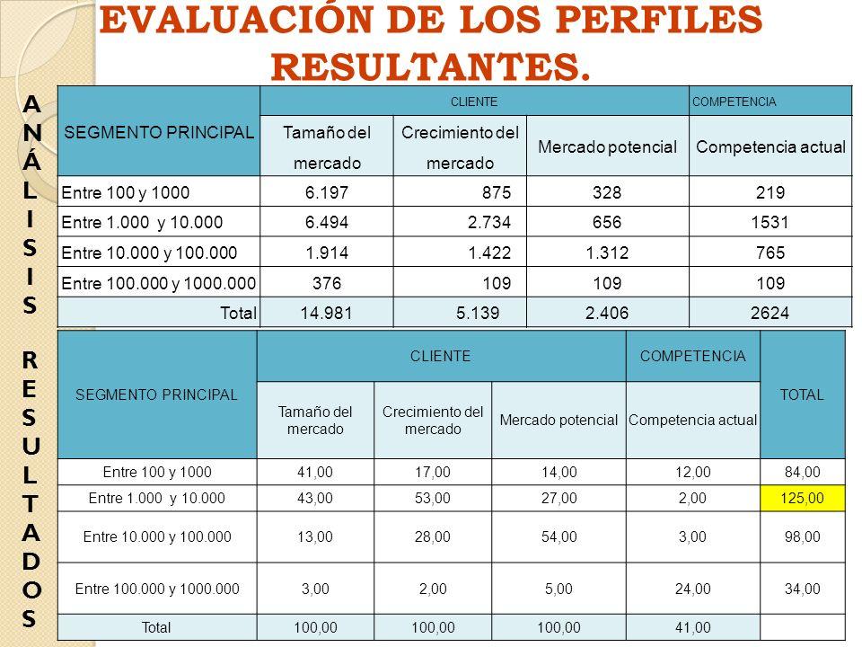 EVALUACIÓN DE LOS PERFILES RESULTANTES. SEGMENTO PRINCIPAL CLIENTECOMPETENCIA Tamaño del mercado Crecimiento del mercado Mercado potencialCompetencia