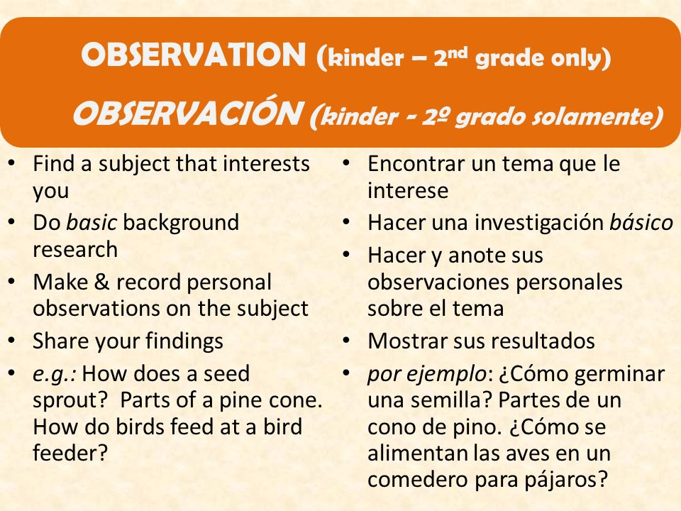 OBSERVATION ( kinder – 2 nd grade only) OBSERVACIÓN ( kinder - 2º grado solamente) Find a subject that interests you Do basic background research Make & record personal observations on the subject Share your findings e.g.: How does a seed sprout.