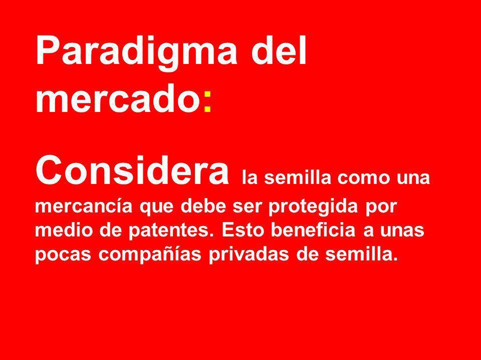 Paradigma del mercado: Considera la semilla como una mercancía que debe ser protegida por medio de patentes. Esto beneficia a unas pocas compañías pri