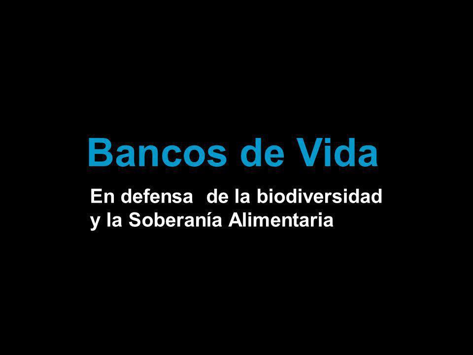 En defensa de la biodiversidad y la Soberanía Alimentaria Bancos de Vida