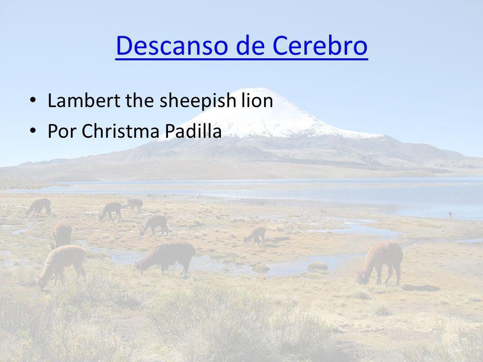 Descanso de Cerebro Lambert the sheepish lion Por Christma Padilla
