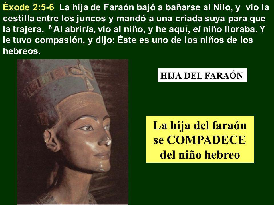 Èxode 2:5-6 La hija de Faraón bajó a bañarse al Nilo, y vio la cestilla entre los juncos y mandó a una criada suya para que la trajera. 6 Al abrirla,