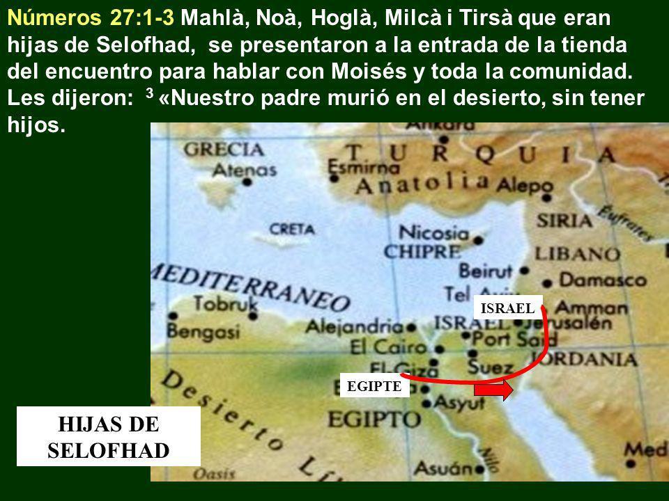 Números 27:1-3 Mahlà, Noà, Hoglà, Milcà i Tirsà que eran hijas de Selofhad, se presentaron a la entrada de la tienda del encuentro para hablar con Moi