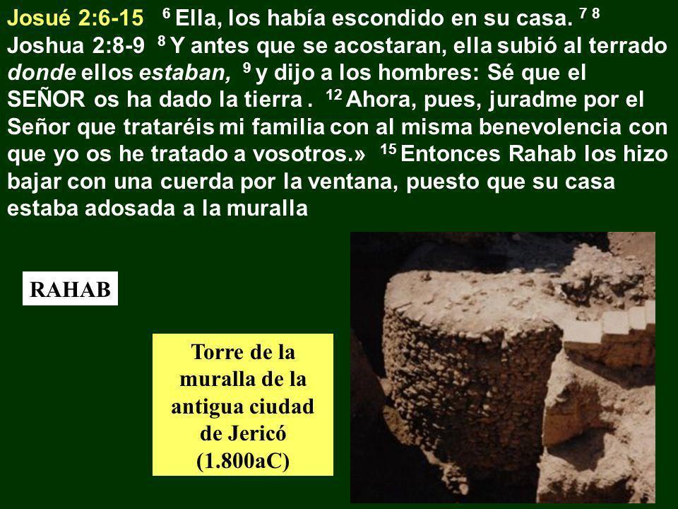 Josué 2:6-15 6 Ella, los había escondido en su casa. 7 8 Joshua 2:8-9 8 Y antes que se acostaran, ella subió al terrado donde ellos estaban, 9 y dijo