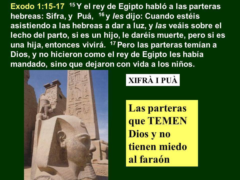 Èxode 1:18-21 18 El rey de Egipto hizo llamar a las parteras y les dijo: ¿Por qué habéis hecho esto, y habéis dejado con vida a los niños.