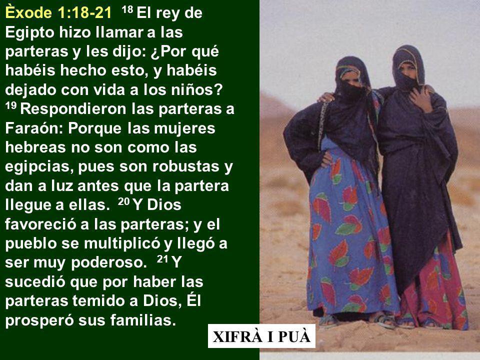 Èxode 1:18-21 18 El rey de Egipto hizo llamar a las parteras y les dijo: ¿Por qué habéis hecho esto, y habéis dejado con vida a los niños? 19 Respondi