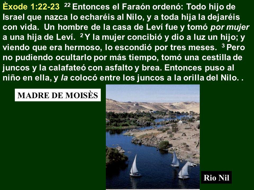 Èxode 1:22-23 22 Entonces el Faraón ordenó: Todo hijo de Israel que nazca lo echaréis al Nilo, y a toda hija la dejaréis con vida. Un hombre de la cas