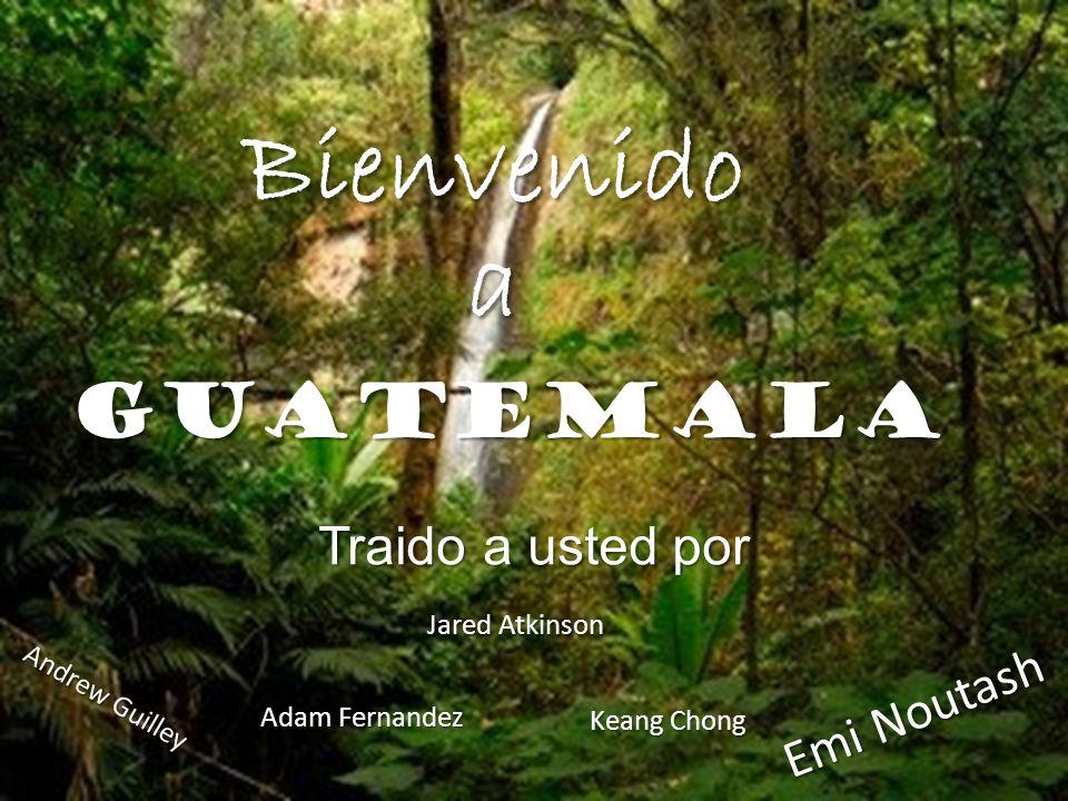 Guatemala Traido a usted por Bienvenido a Jared Atkinson Adam Fernandez Keang Chong Andrew Guilley Emi Noutash