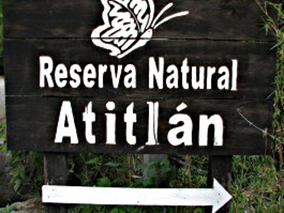 Lago Atitlan Natural Reserva Lago Atitlan Natural Reserva Ellos tienen un… Mariposario- Tienen mas de 2,000 flora y 300 mariposas Mariposario- Tienen mas de 2,000 flora y 300 mariposas Caja mono- Tienen mucho monos que se puede ver Caja mono- Tienen mucho monos que se puede ver Zip- Para que usted pueda montar a traves de los bosques Zip- Para que usted pueda montar a traves de los bosques Senderos naturales- Para tu caminas y ver las animales Senderos naturales- Para tu caminas y ver las animales Playa privada- Para tu para su disfrute y la relajación Playa privada- Para tu para su disfrute y la relajación Zonas de acampada- Para tu a dormas cerca de los animales Zonas de acampada- Para tu a dormas cerca de los animales