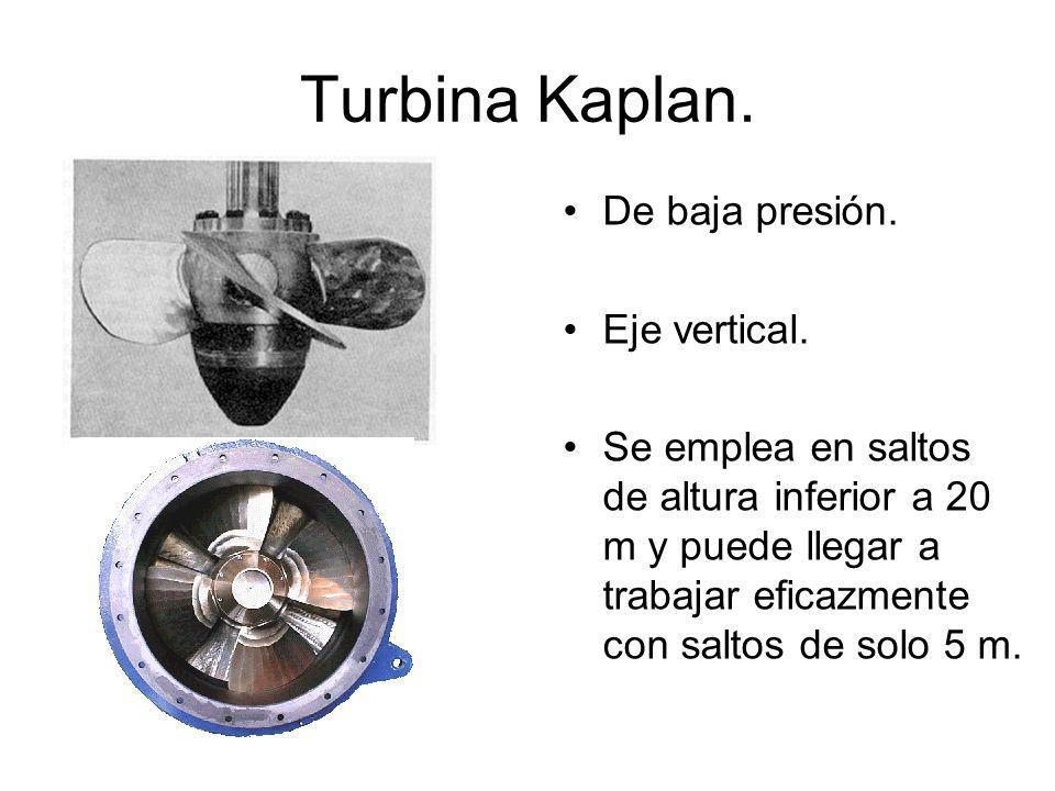 Turbina Kaplan.De baja presión. Eje vertical.