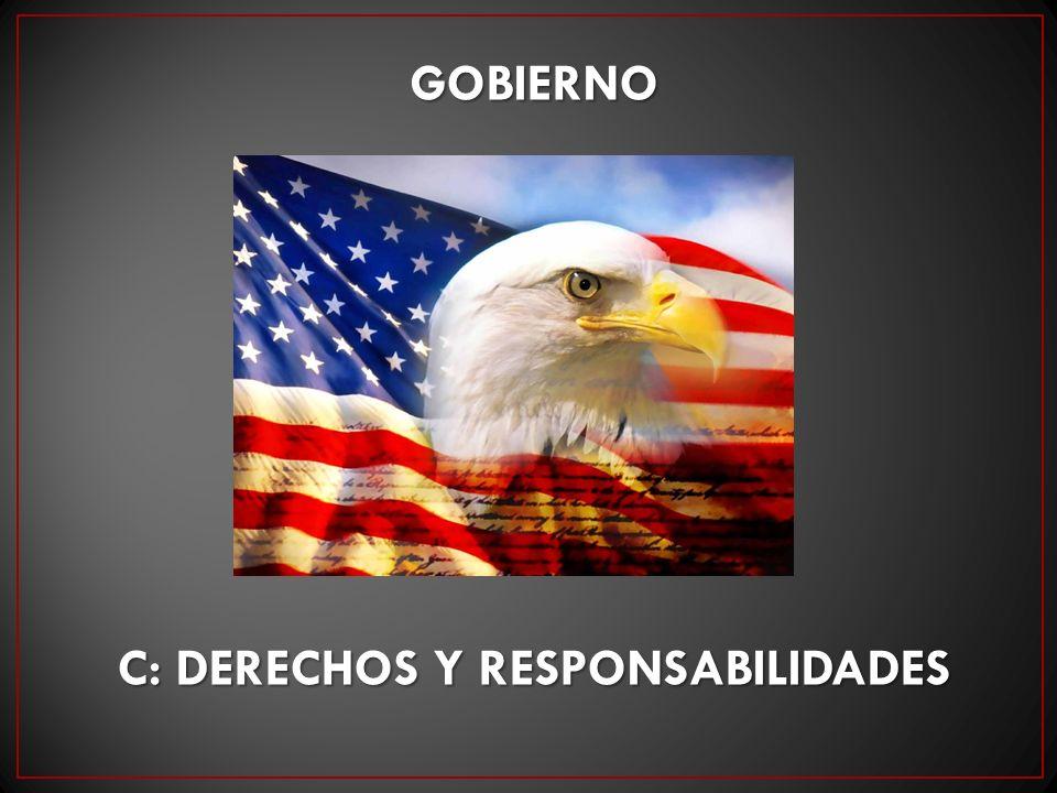 GOBIERNO C: DERECHOS Y RESPONSABILIDADES