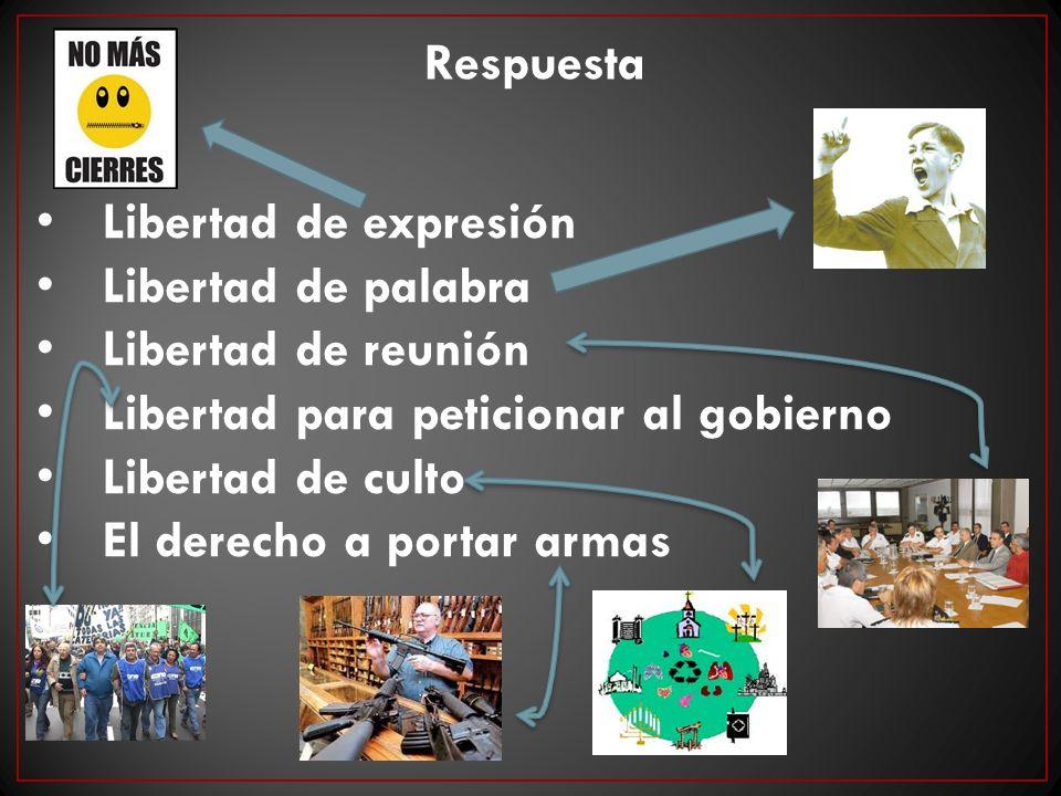Libertad de expresión Libertad de palabra Libertad de reunión Libertad para peticionar al gobierno Libertad de culto El derecho a portar armas Respues
