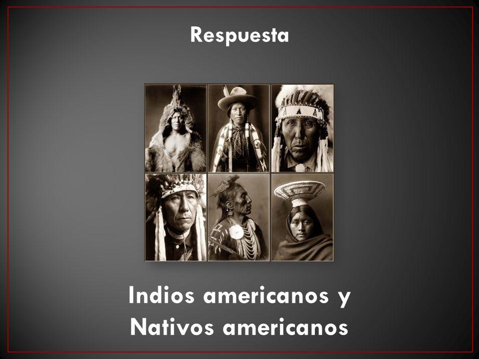 Respuesta Indios americanos y Nativos americanos