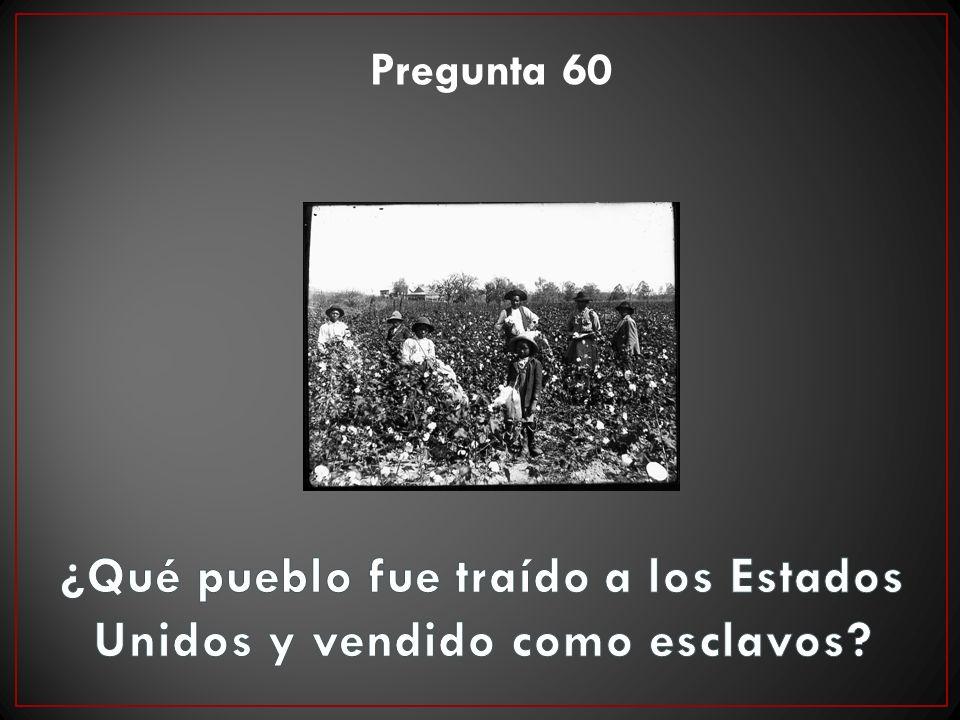 Pregunta 60