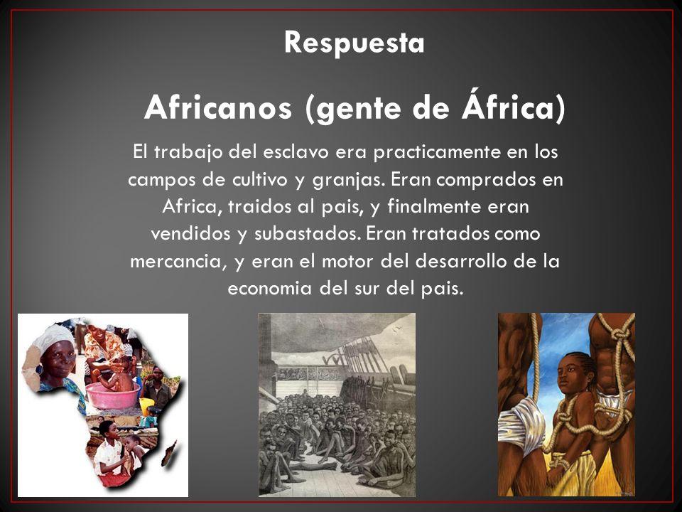Africanos (gente de África) Respuesta El trabajo del esclavo era practicamente en los campos de cultivo y granjas. Eran comprados en Africa, traidos a