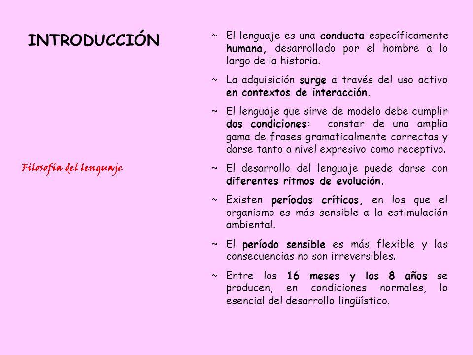DESARROLLO DEL LENGUAJE IV 25 – 36 meses: Frases de 3 palabras.