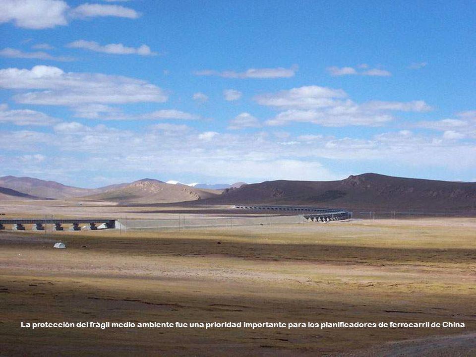 El ferrocarril Qinghai-Tíbet se extiende por 1.956 kilómetros desde Xining, capital de la provincia de Qinghai a Lhasa. Le costó al Gobierno Chino uno