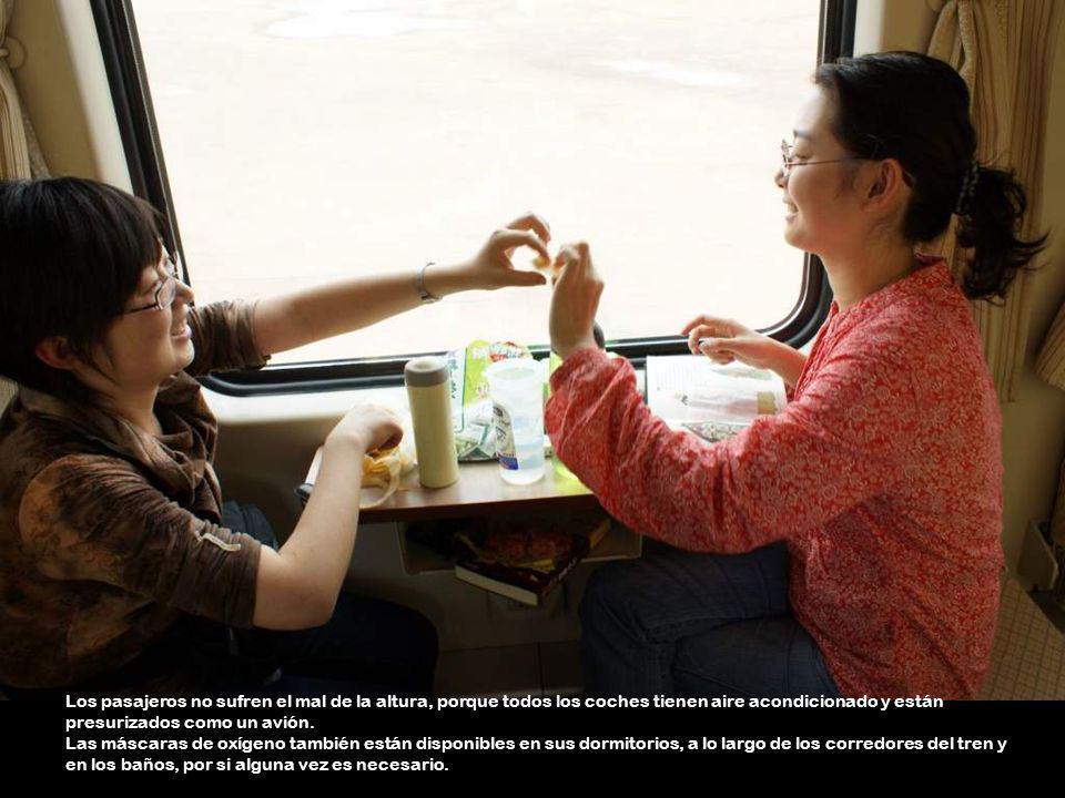 El servicio en el tren es excelente. El amable personal ofrece frutas, bocadillos y bebidas con una sonrisa.
