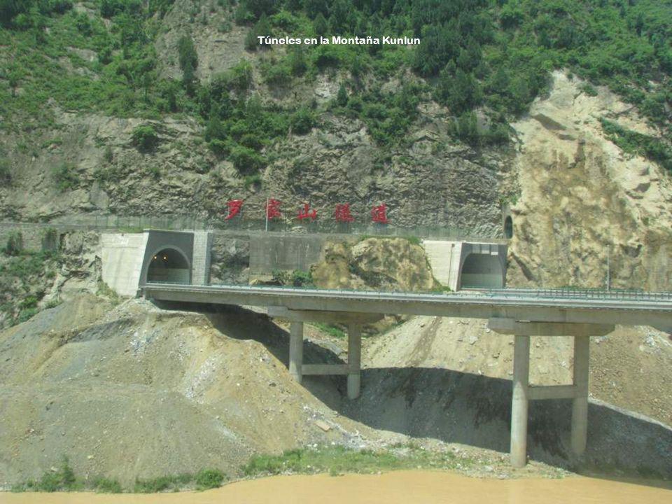 Teniendo en cuenta los asuntos ambientales de la meseta del Tíbet, o sea, su ecosistema ecológico de gran altura, las autoridades presupuestaron un 8%