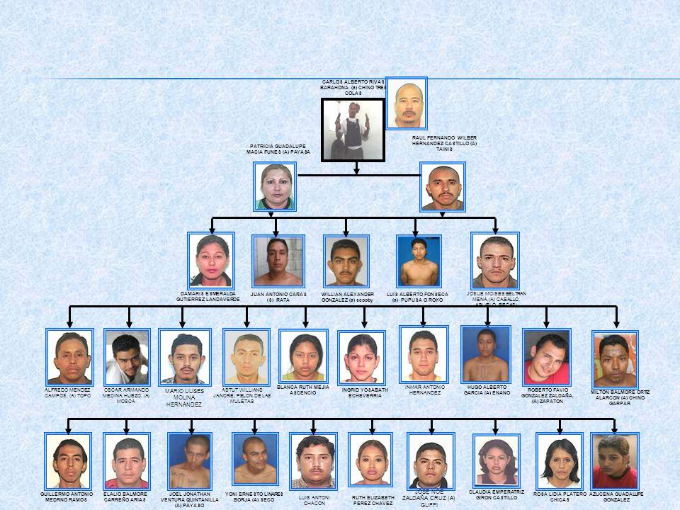 LUIS ALBERTO FONSECA (a) PUPUSA O ROKO JUAN ANTONIO CAÑAS (S) RATA WILLIAN ALEXANDER GONZALEZ (a) scooby DAMARIS ESMERALDA GUTIERREZ LANDAVERDE CARLOS