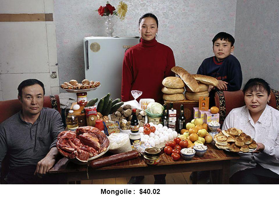 Mongolie : $40.02