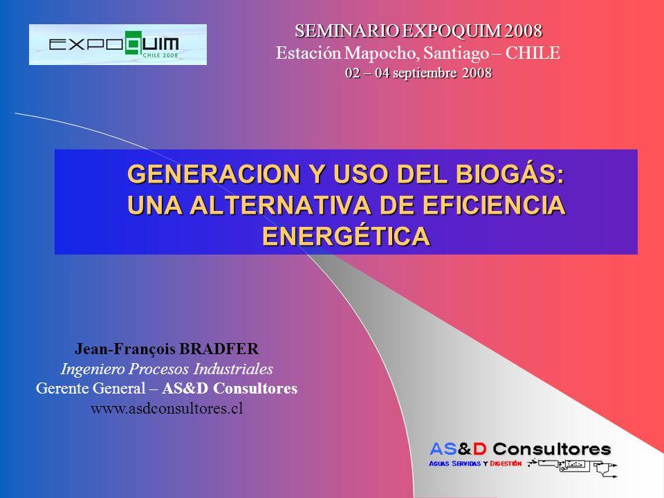GENERACION Y USO DEL BIOGÁS: UNA ALTERNATIVA DE EFICIENCIA ENERGÉTICA SEMINARIO EXPOQUIM 2008 Estación Mapocho, Santiago – CHILE 02 – 04 septiembre 20