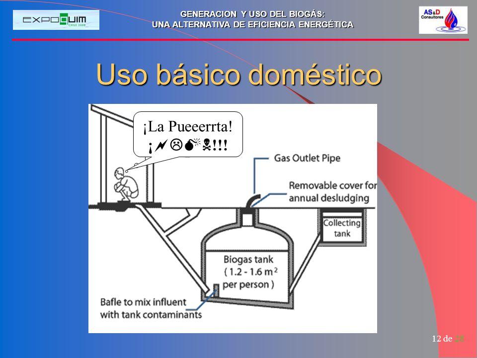 GENERACION Y USO DEL BIOGÁS: UNA ALTERNATIVA DE EFICIENCIA ENERGÉTICA 12 de 28 Uso básico doméstico ¡##@ !!! ¡La Pueeerrta! ¡ !!!